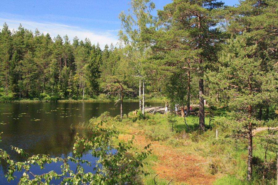Schweden_2010.284